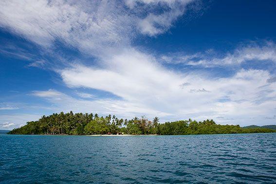 Pazifik - ein Naturparadies in Gefahr