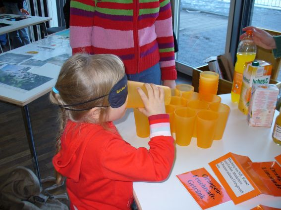 Geschmackstest Orangensaft - Workshop Orangen