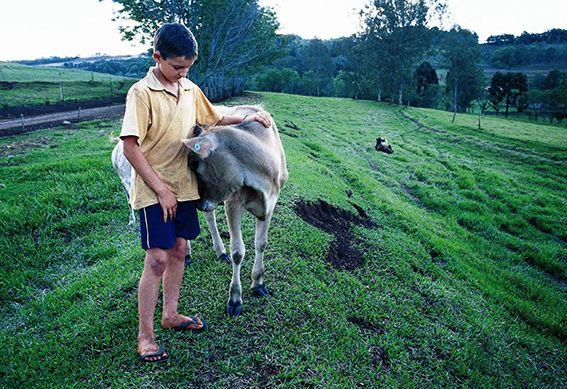 Junge aus einer Kleinbauern-Familie auf dem Feld
