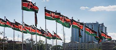 Flaggenmeer - kenianische Flagge