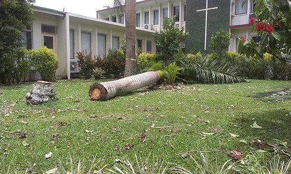 Verwüstung durch Zyklon Winston auf Fidschi © Hanna Schubert