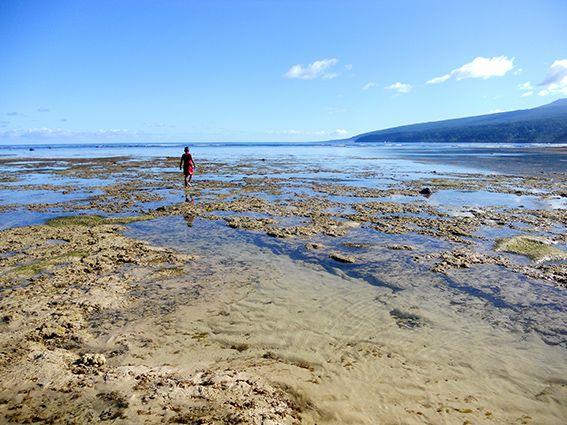 Land (Fidschi) © Schwarz