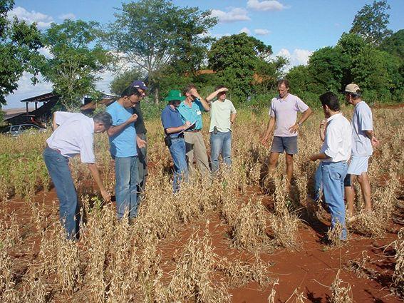 Eine Gruppe von Kleinbauern erhalten Beratung aus dem Zentrum