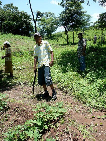 Feldarbeit in Nicaragua