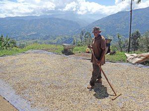 2. Preis: Kaffeeanbau in Papua-Neuguinea. © Daniel Schlüter